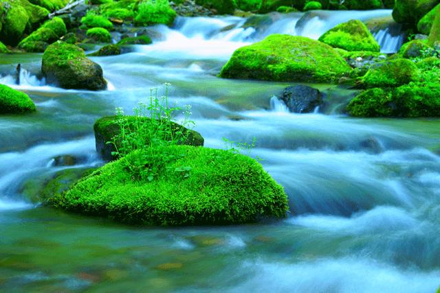 現代人が学ぶべき老荘思想の基本「水の精神」