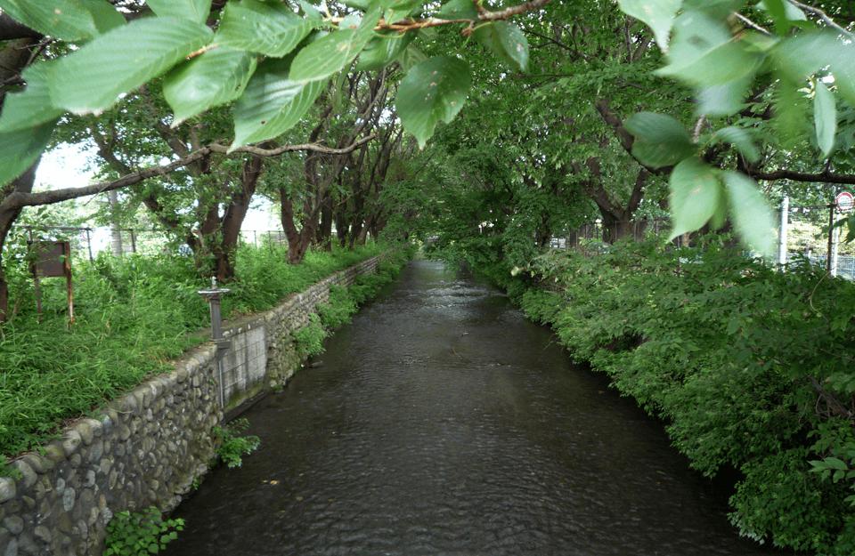 「水へのこだわり」から生まれたアッピア水道と玉川上水