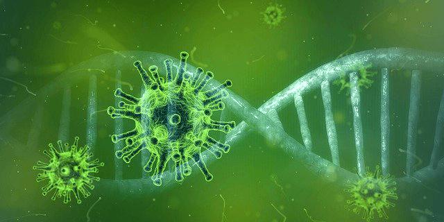 ウイルスの大流行を招くのはグローバル化の負の側面